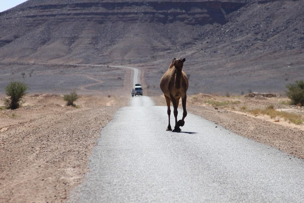 Morocco © John Y. Can / Flickr