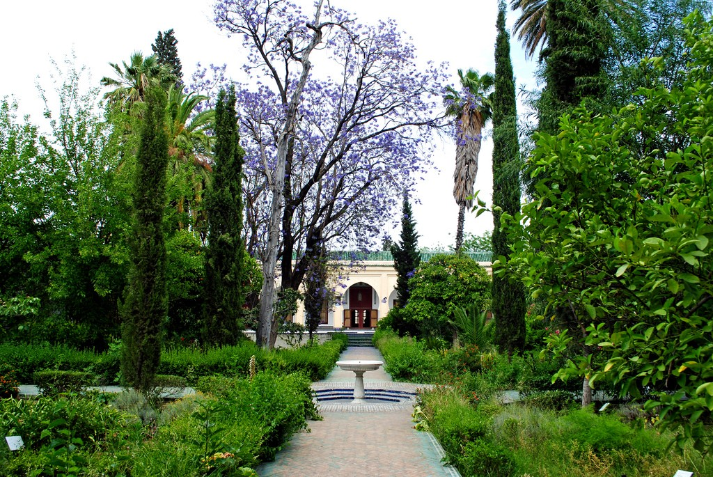 The courtyard garden at the Dar Batha Museum in Fes ©Cait / Flickr