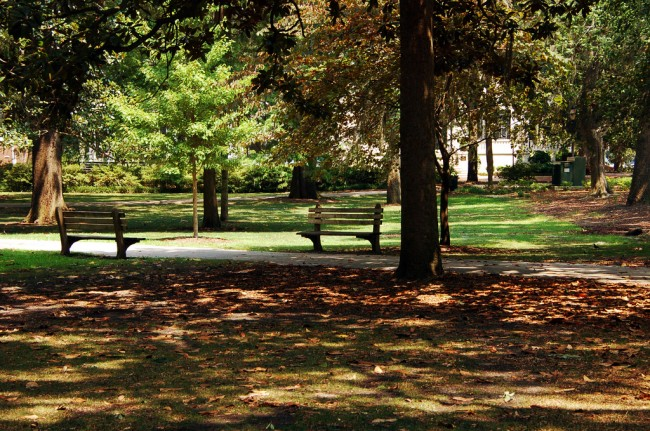 Forsyth Park   © Britt Reints/Flickr