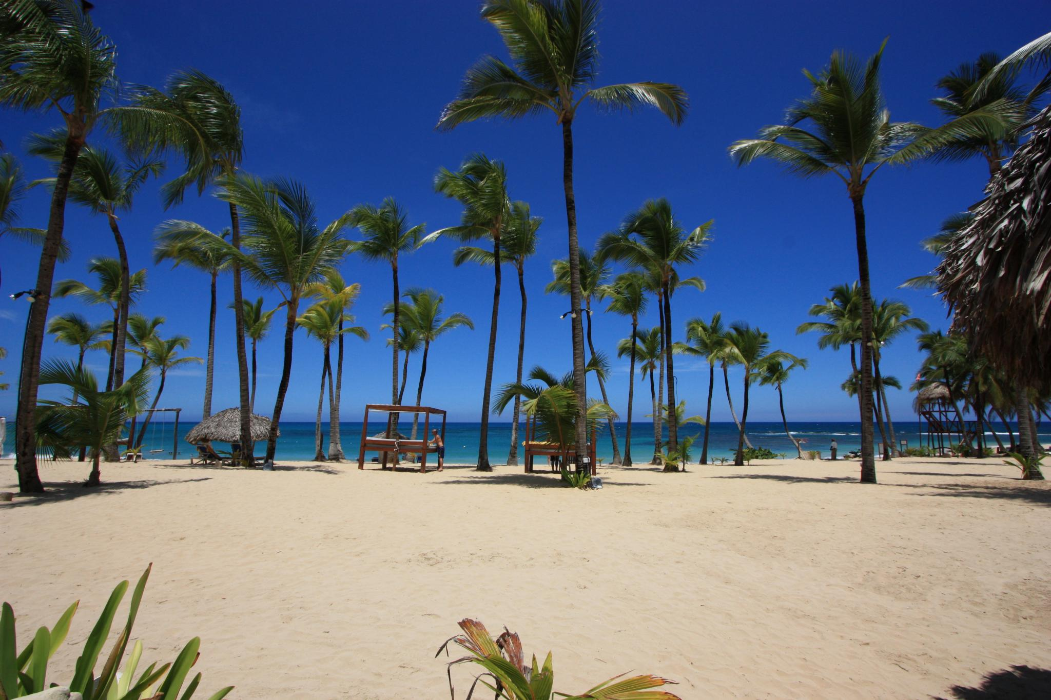 The 10 Best Restaurants In Punta Cana Dominican Republic