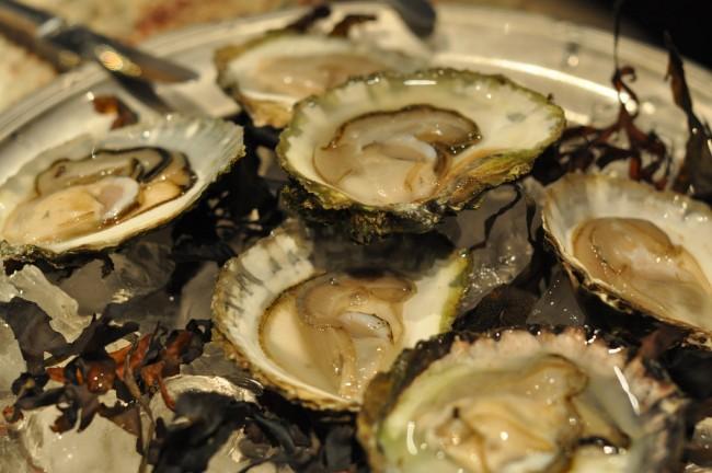 Oysters © Charlotta Wasteson