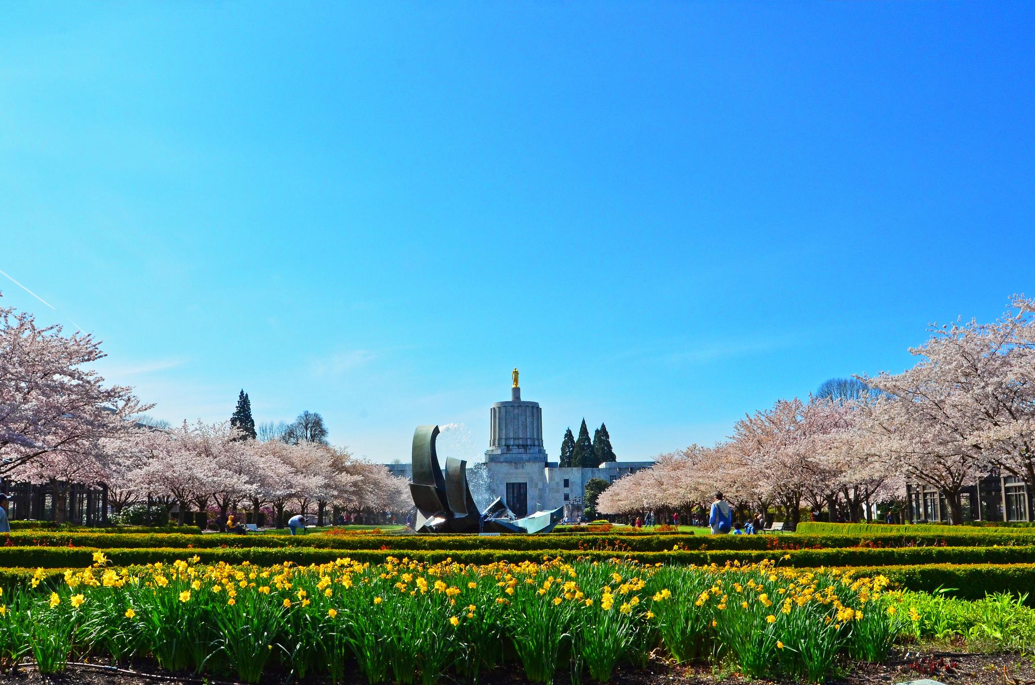 Best Food Oregon City