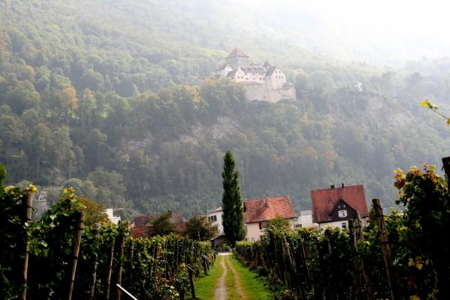 Liechtenstein Vineyard| © Cindy Dam/Flickr