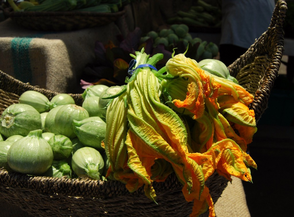 Zucchini Blossoms | © Aaron Fulkerson/Flickr
