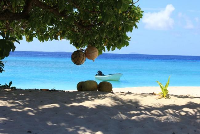 Fijian Beach © Duncan Odds