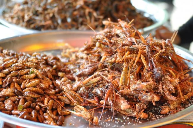 Assortment of Cambodia Bugs |© shankar s./Flickr