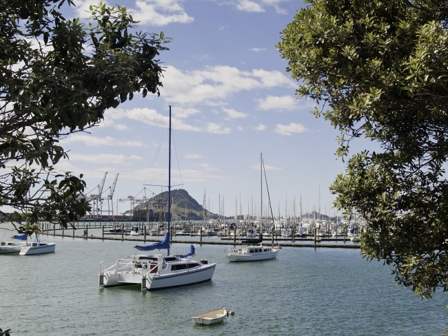 Cataramarans moored in Tauranga Harbor | © Brian brianscantlebury.com / Flickr