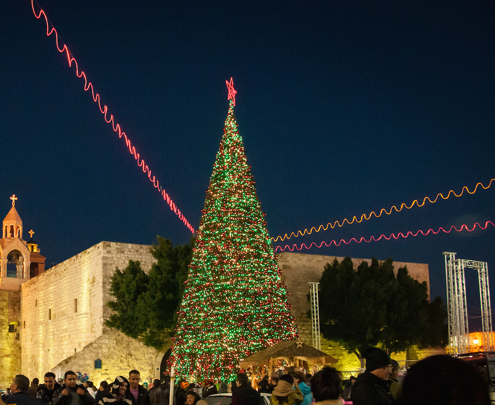 The Tree Itself Is 15 Metres High And Located In The Appropriately Named  Manger Square ©