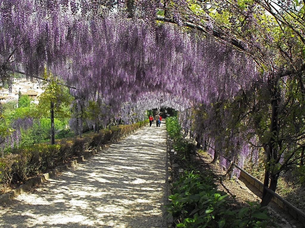 Secret Garden of Giardino Bardini Florence Italy © Putneypics