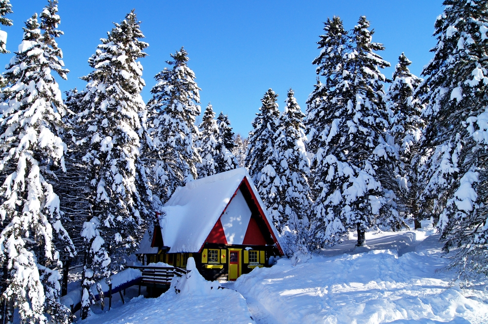 House covered with snow in the middle of fir forest Canada Quebec ©Llyanasa / Shutterstock
