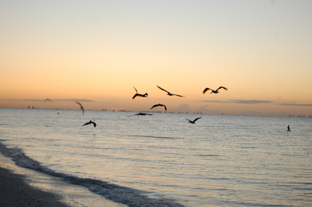 Sanibel Island | Jeremy T. Hetzel/Flickr