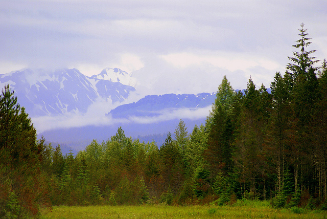 Gustavus, Alaska | ©CC Miller/Flickr
