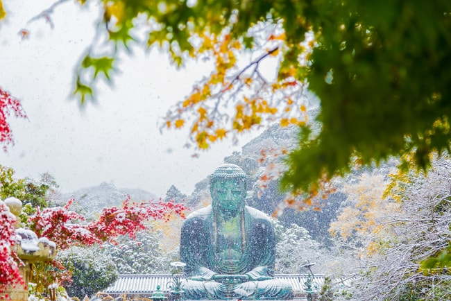 Kamakura's Great Buddha covered in snow during the winter | © MI7/Shutterstock