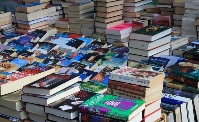 A Vast Selection of Books/ © Pixabay