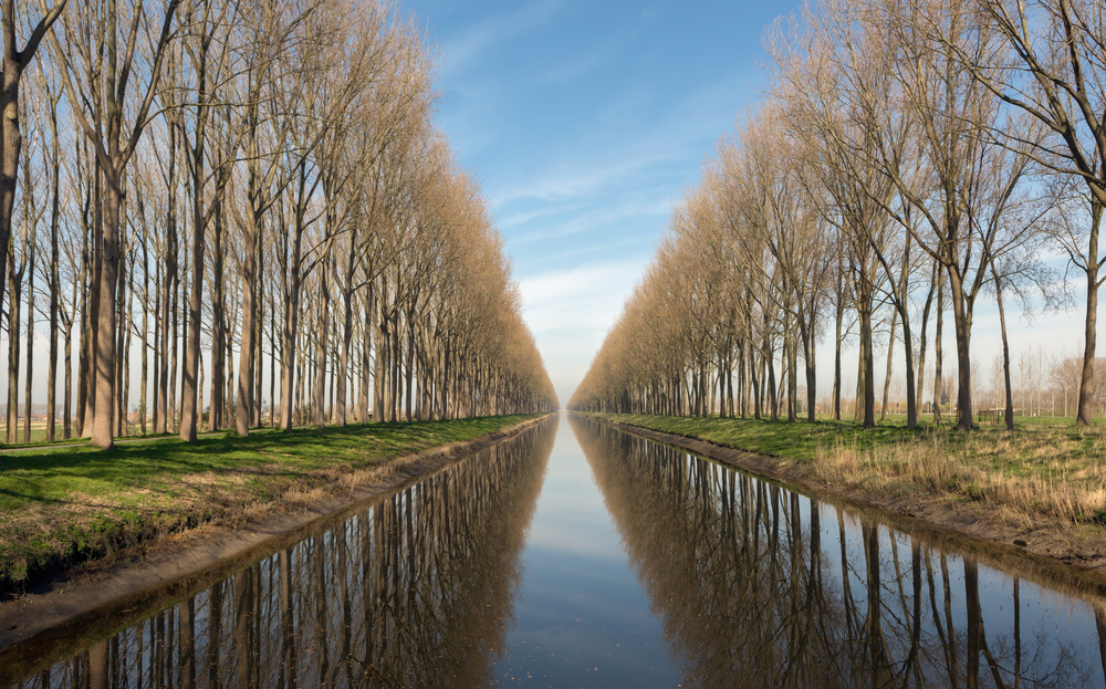 Damse Vaart canal in the village of Damme near Bruges in Belgium © Anneka / Shutterstock