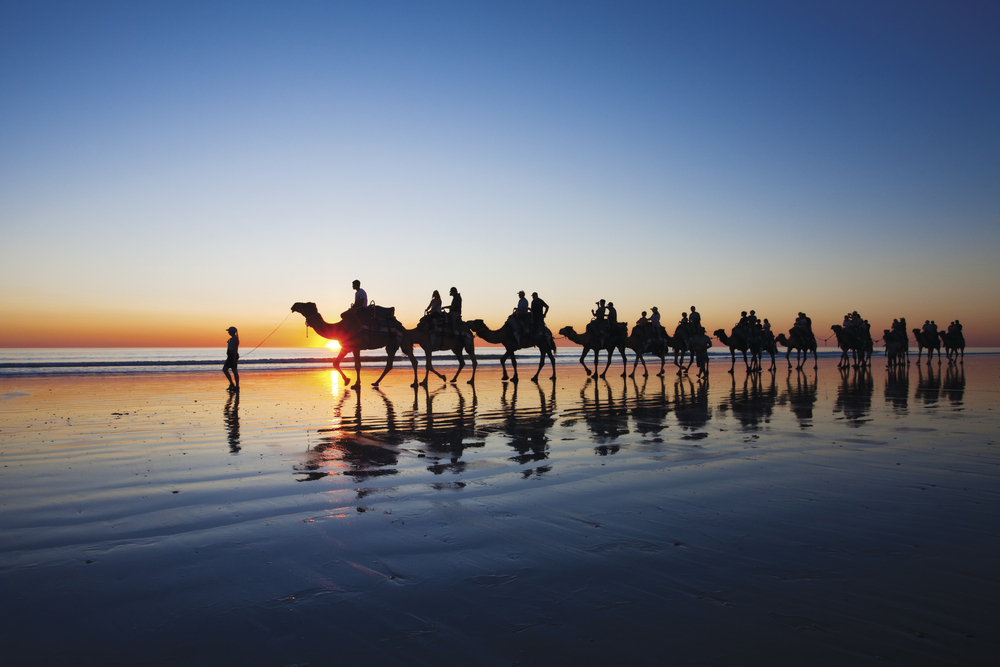 Camels walking on Cable Beach, Broome, Western Australia | © bmphotographer/Shutterstock