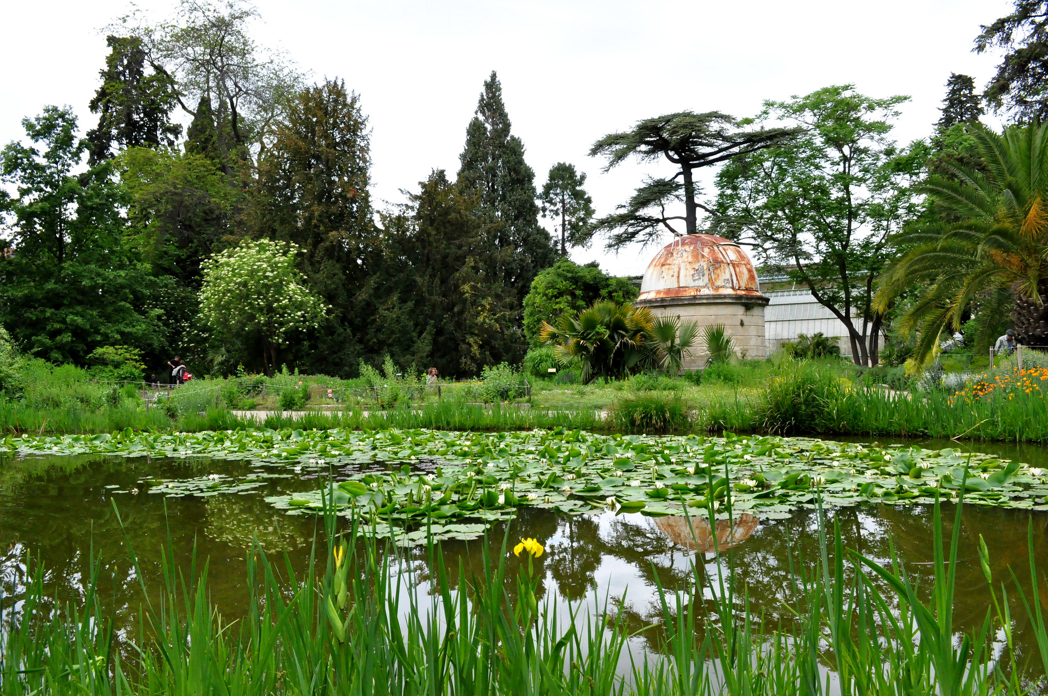 The 10 best restaurants in montpellier france for Le jardin des plantes montpellier