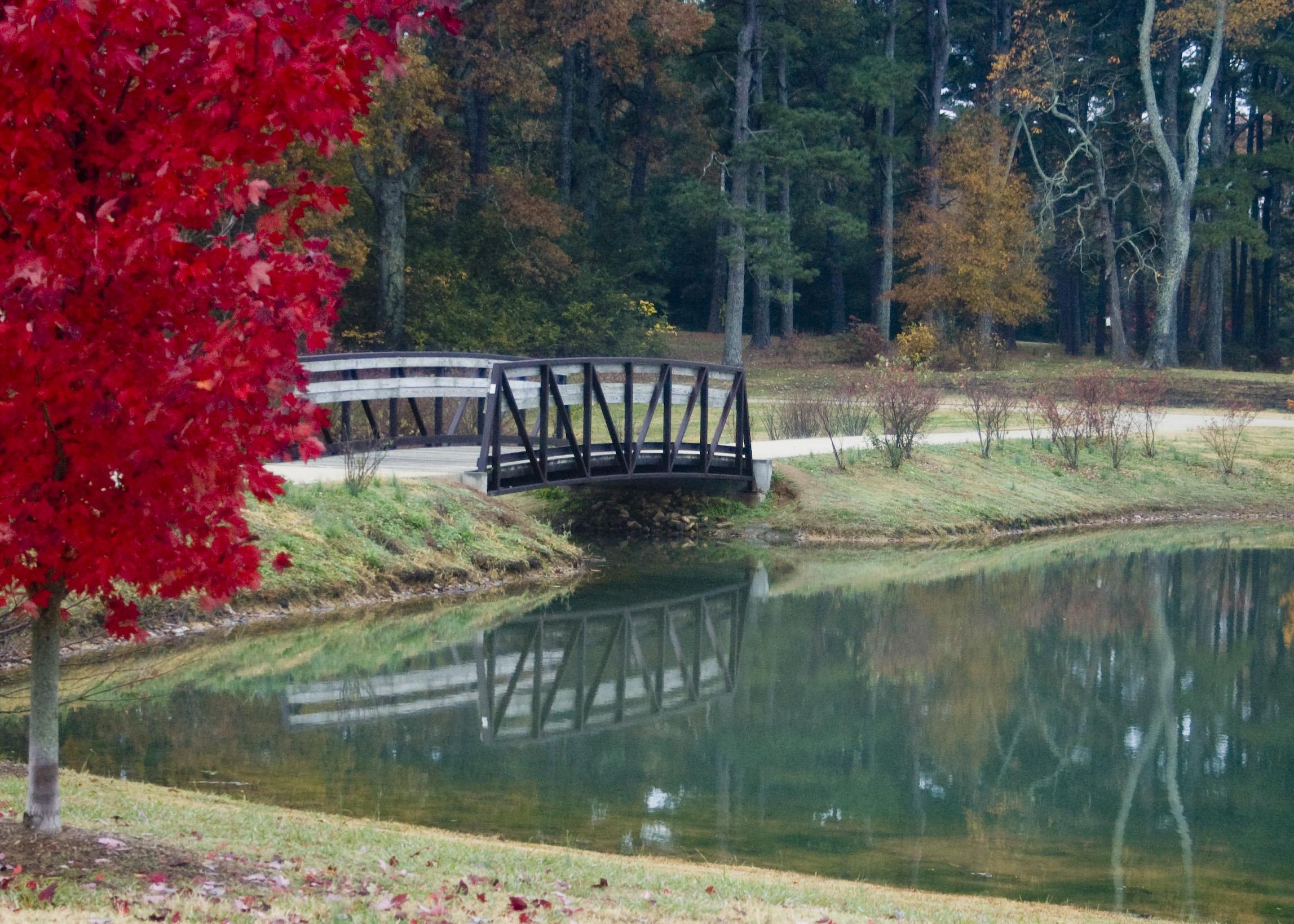 Florence Alabama