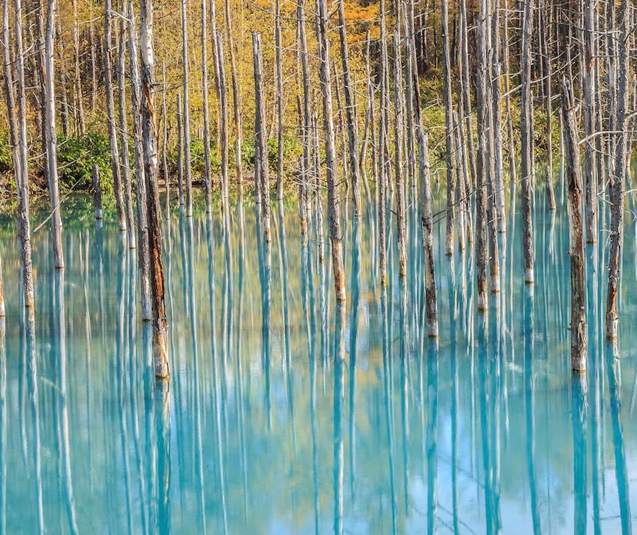 Голубой пруд: Ворота в пустыню  loverme
