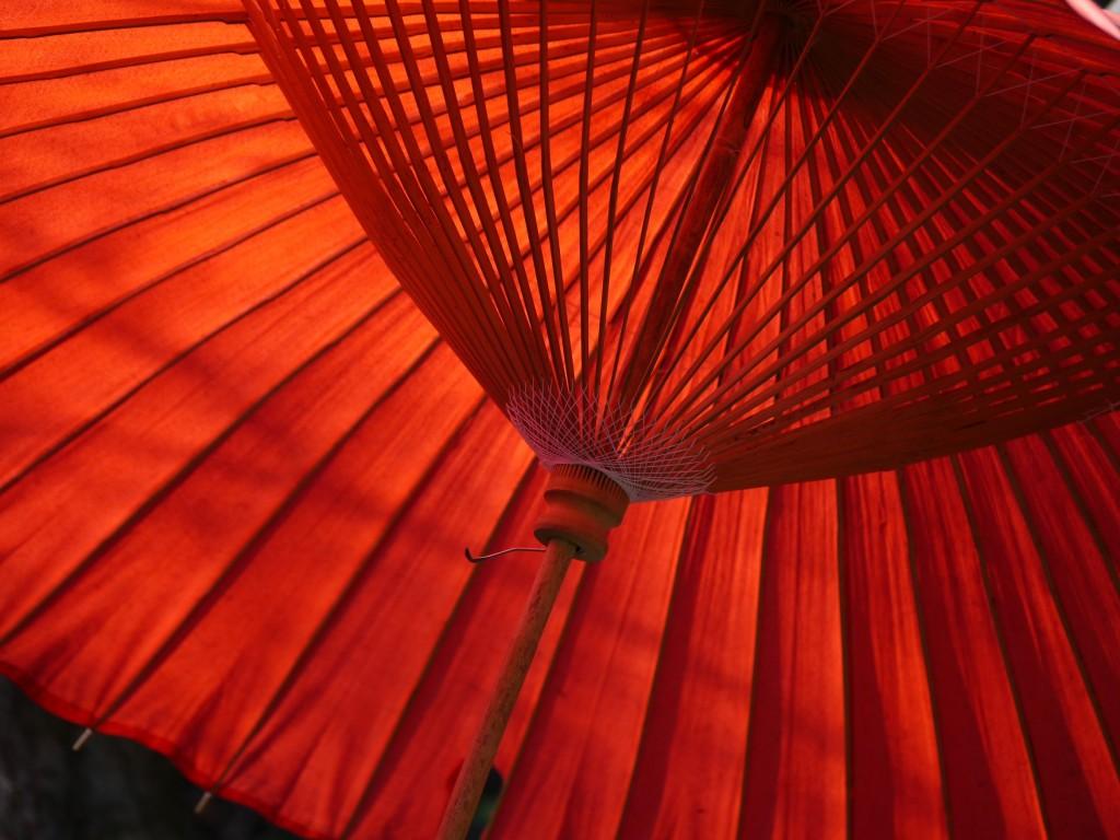 Японский зонтик loverme