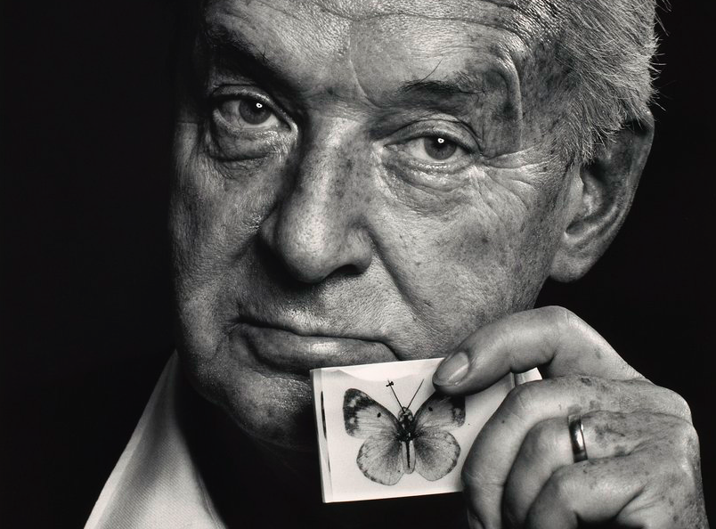Five Classics by Vladimir Nabokov That Demonstrate His Prowess For ...