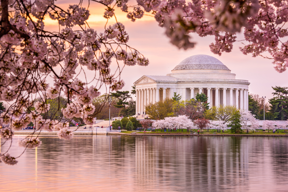 Tidal Basin and Jefferson Memorial during spring © Sean Pavone / Shutterstock