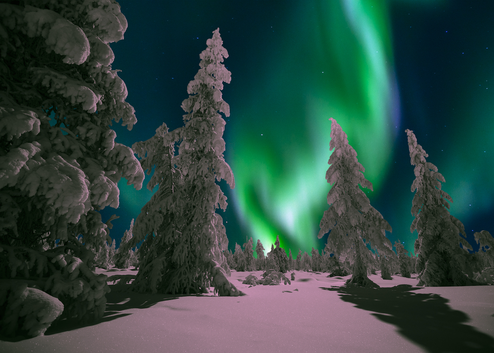 Winter night landscape with forest and polar northern lights. Lapland © Oxana Gracheva / Shutterstock