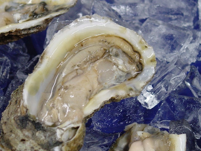 The Freshest of Oysters