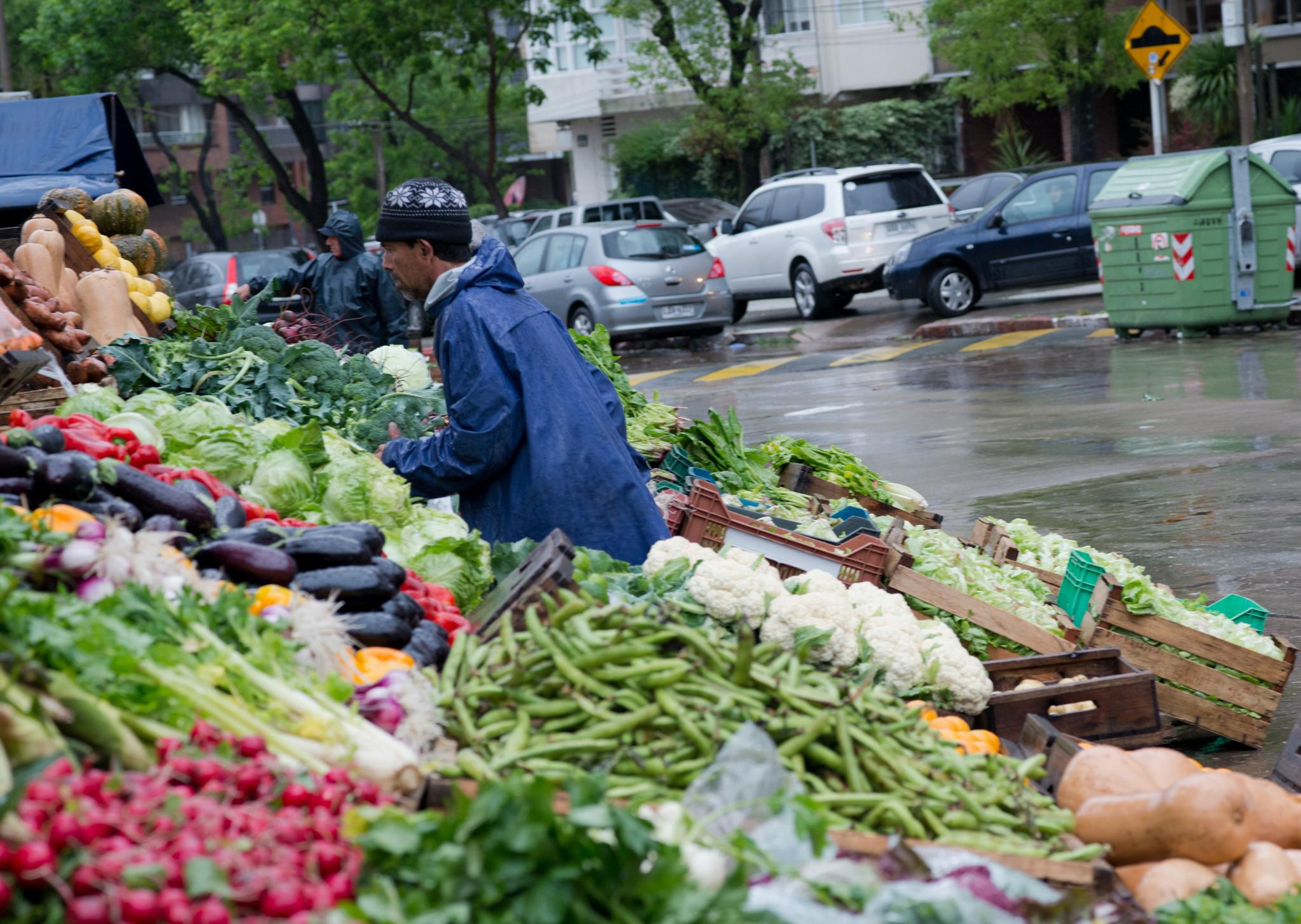 The Best Markets In Montevideo Uruguay