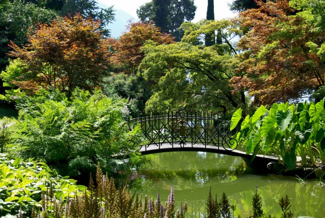 Botanic Gardens, Como | ©  djedj/Pixabay