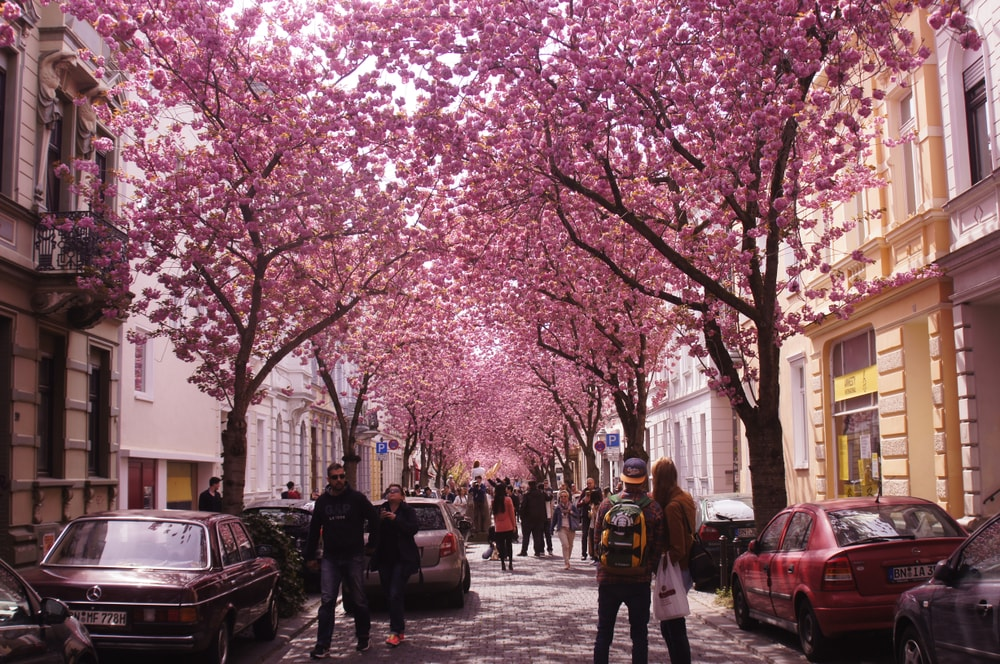 Heerstrasse in Bonn, Germany