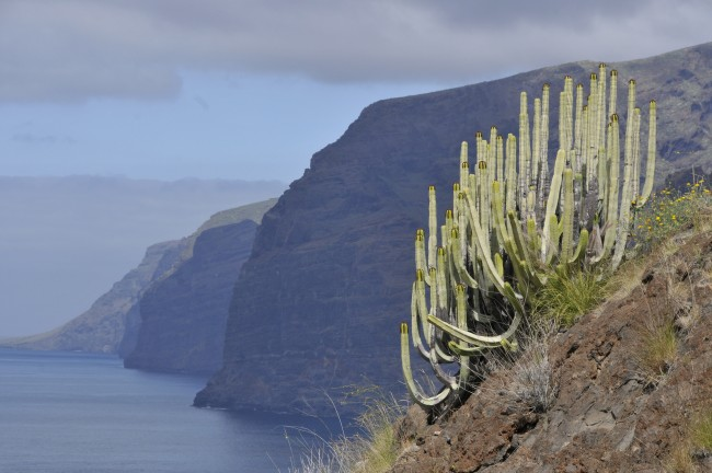 The Spanish island of Tenerife has invested a lot of money and hard work into converting its rocky coastline into a sunny heaven © POTIER Jean-Louis / Flickr
