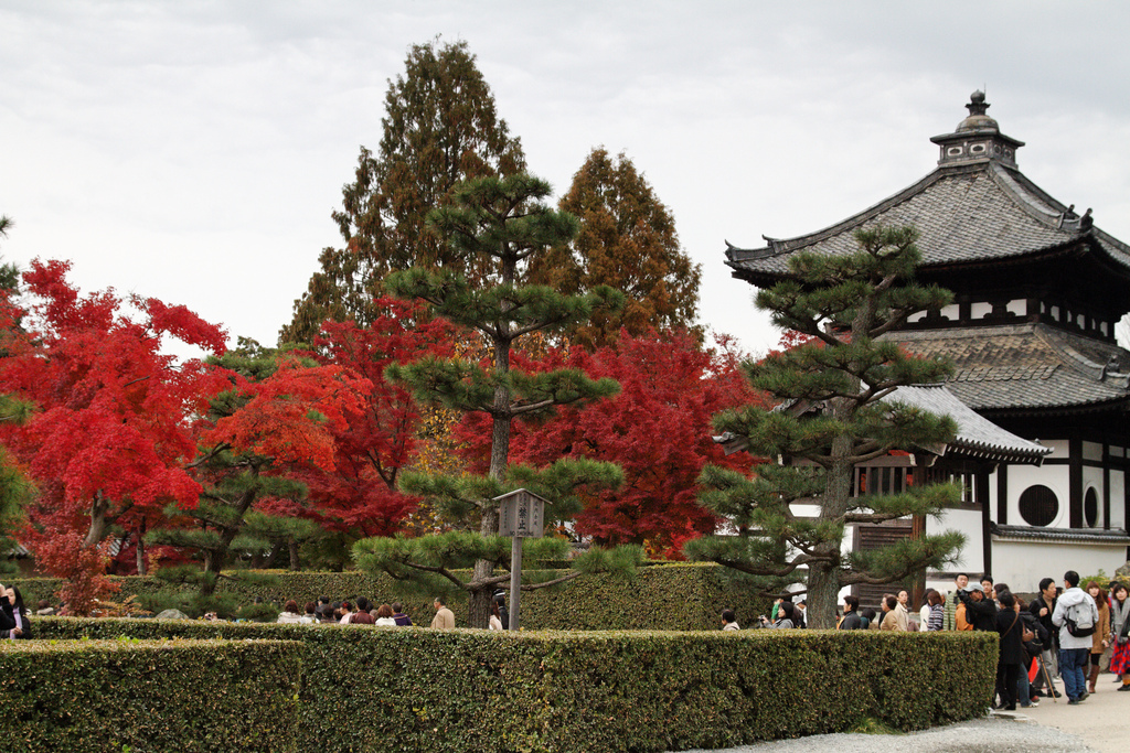 Tofuku-ji Temple | © Kimon Berlin / flickr