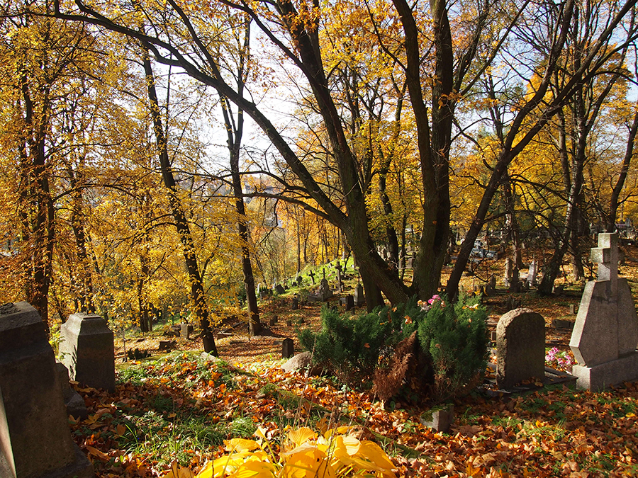 Bernardine Cemetery in the fall ©Elizabeth Georgian