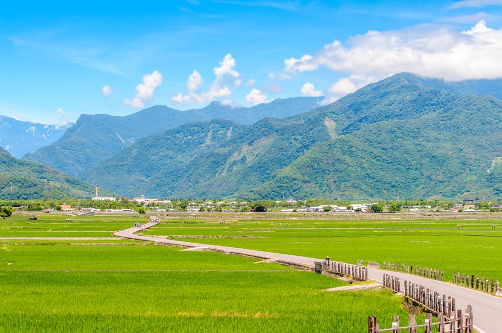 Heaven Road, Landscape of Chishang, Taitung | © Richie Chan/Shutterstock
