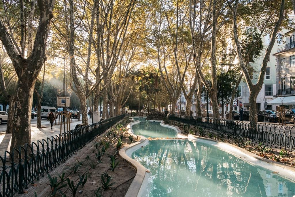 Watson - Portugal - Lisbon -Pond at Avenida de Liberdade_