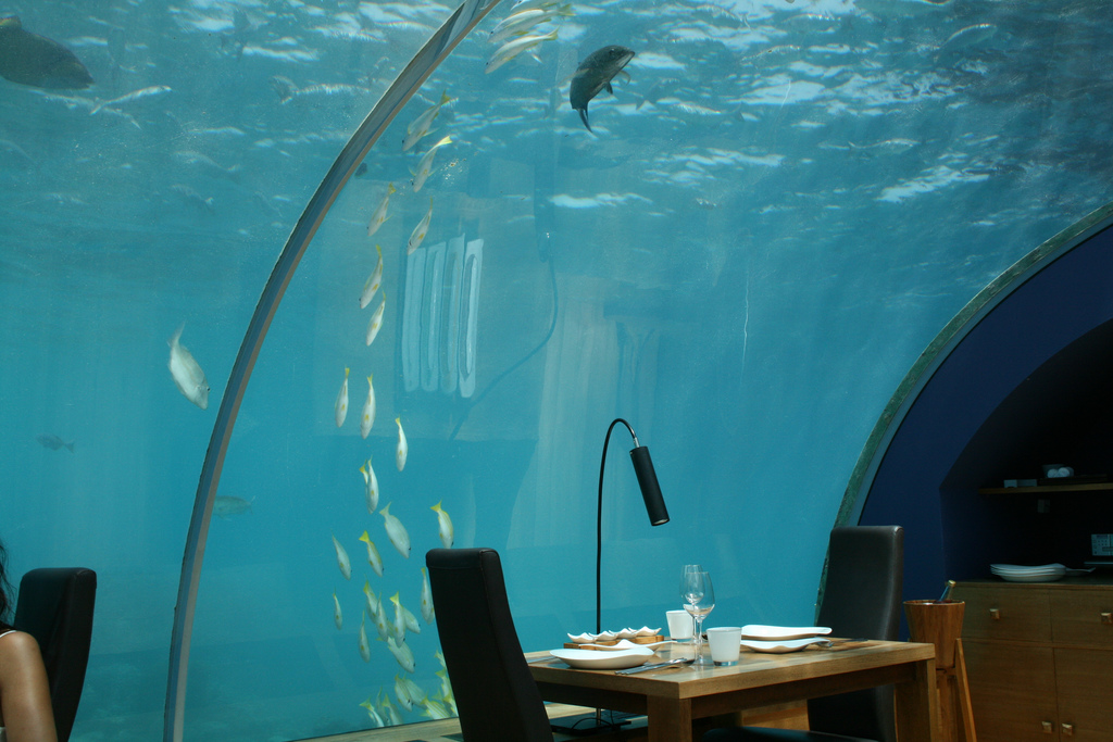 Ithaa Restaurant, Maldives © Christian Jensen/Flickr