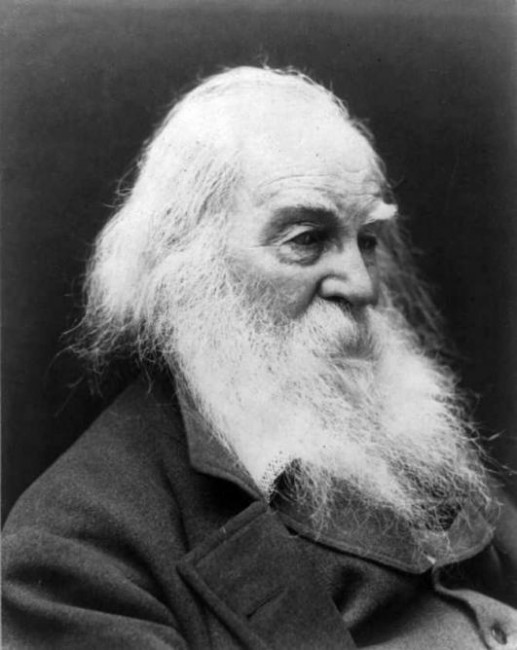 walts whitmans vision of america in Bmcv walt whitman cargado por nata  whitman's personalization of his democratic vision is traced throughout  one direction whoops america eskimos are not.