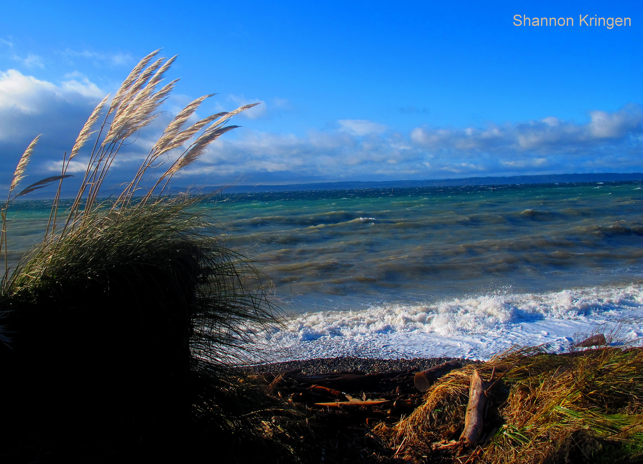 Whidbey Island on a Stormy Day | © Shannon Kringen/Flickr