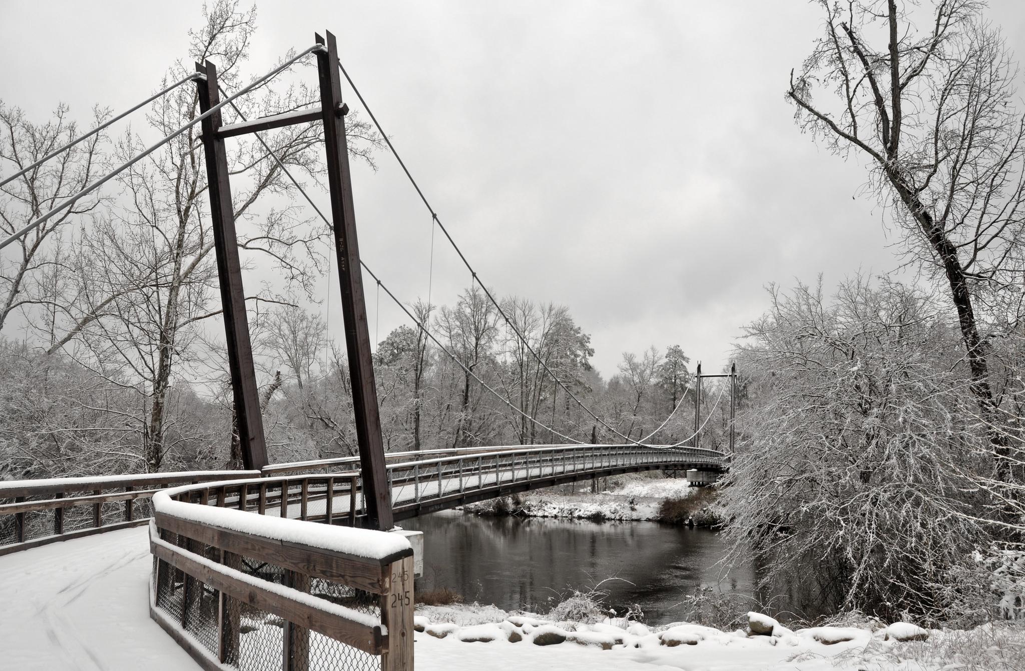 Neuse River Greenway   © James Willamor/Flickr