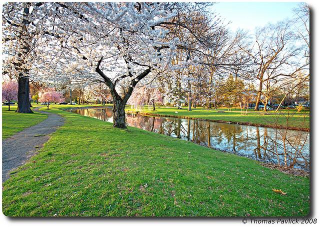 Warinanco Park I © Tom/Flickr