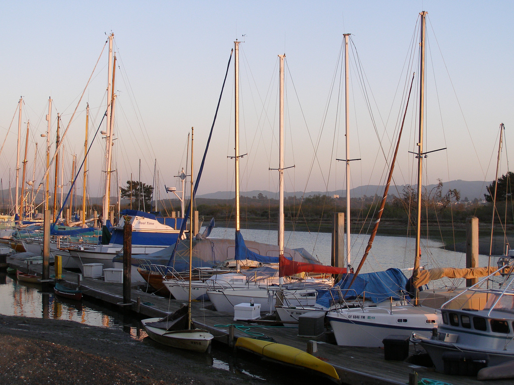 Bayside Boats | © Here for the Art ...I'm Still Here../Flickr