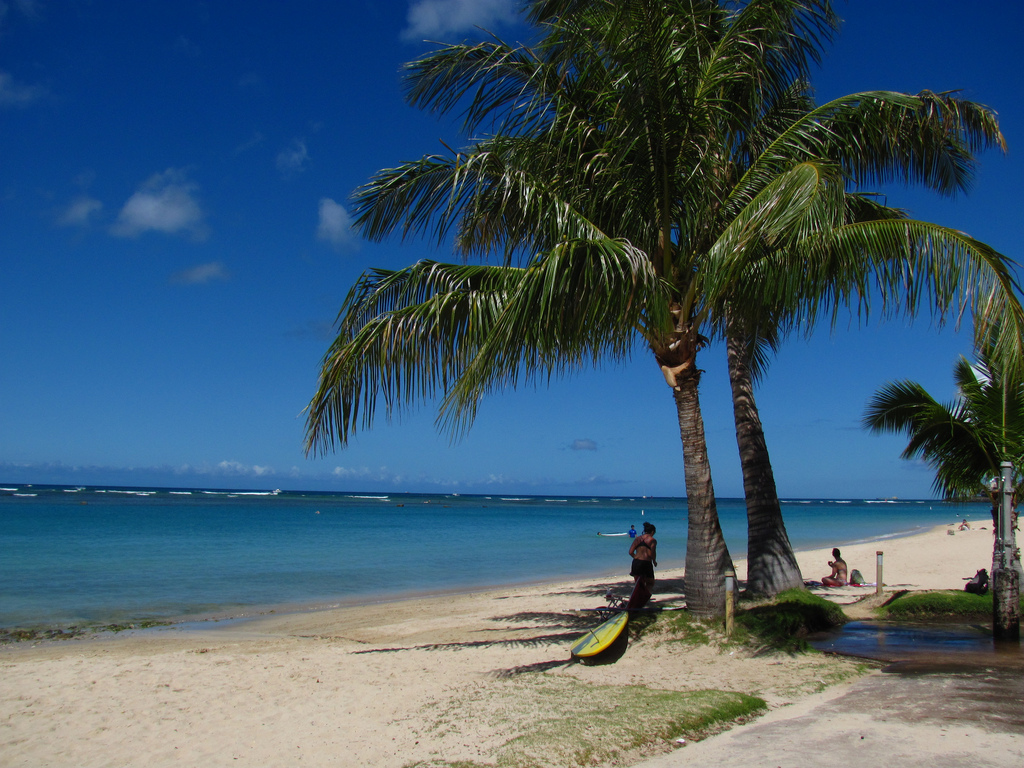 The Top 10 Things To Do And See In Ala Moana Hawaii
