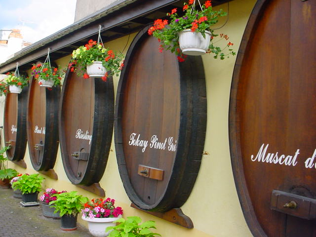 Wine barrels in Alsace, France, for wines of several notable varieties  © Andreea /WikiCommons