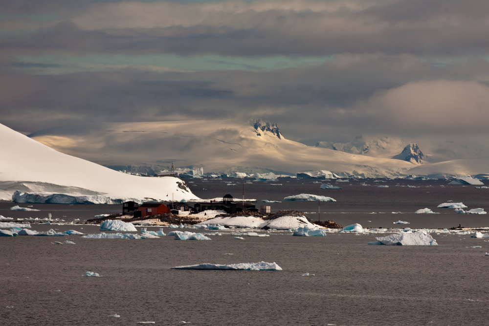 the best of culture in antarctica