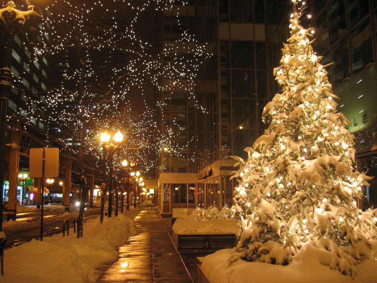 Chicago Christmas lights | © Jordan Fischer/Flickr