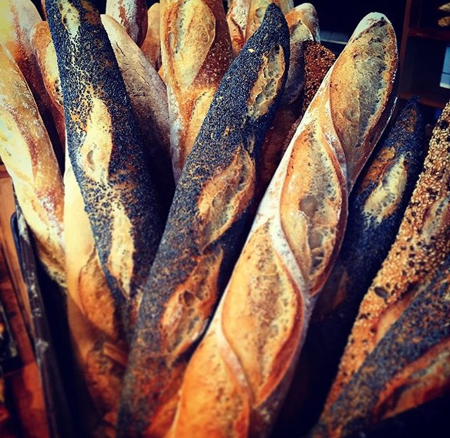 Delicious Bread from Bread&Company