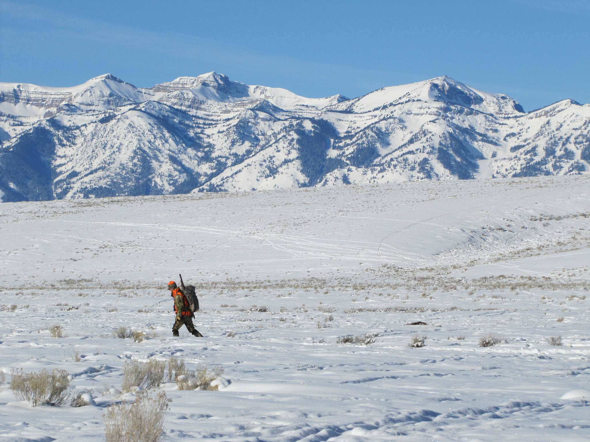 Hunter in the snow © USFWS Mountain-Prairie_Flickr