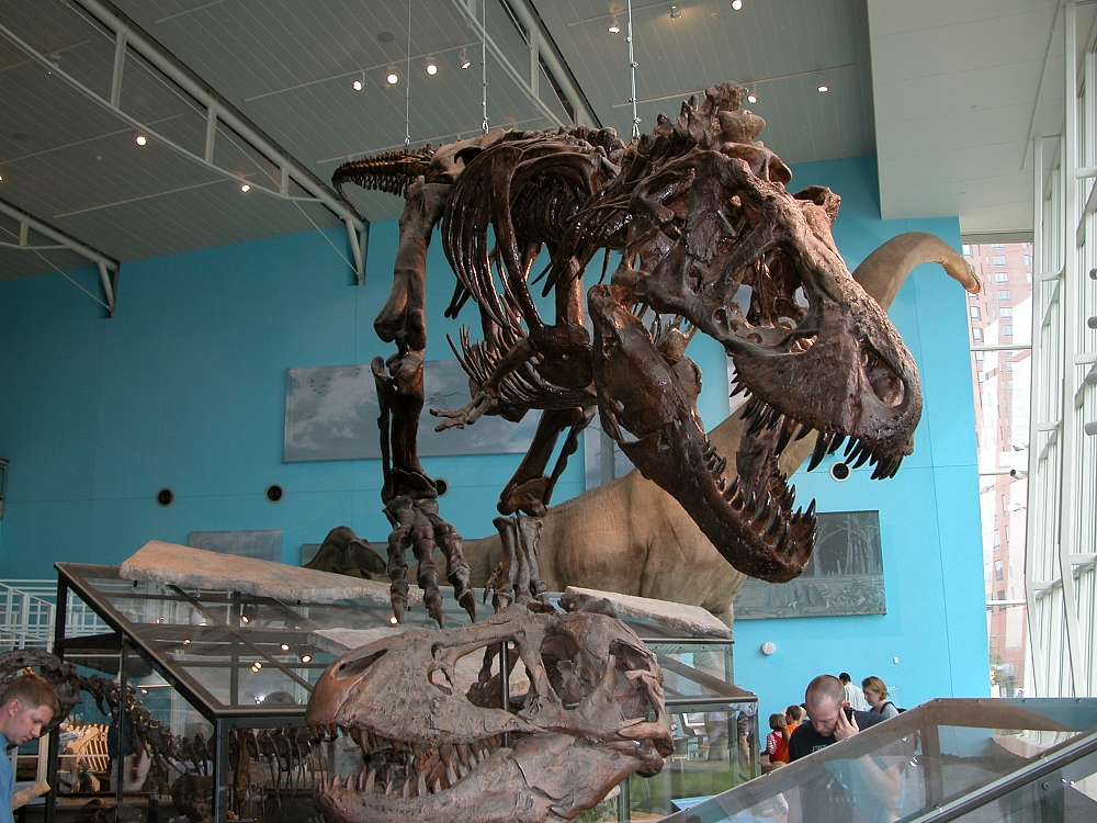Dinosaur exhibition at the Maryland Science Center © Fritz Geller-Grimm/WikiCommons