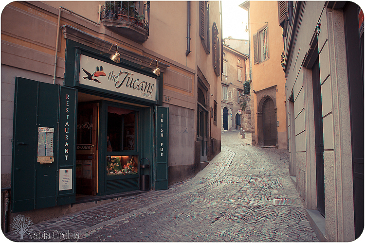 The Tucans, Bergamo | Ⓒ Lola Hierro/Flickr